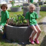 Alle Klassen haben ihren eigenen kleinen Garten, in dem sie Gemüse, Obst und Blumen pflanzen.