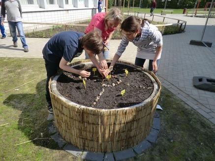 Der Frühling ist da und unser Schulgartenprojekt ist gestartet!